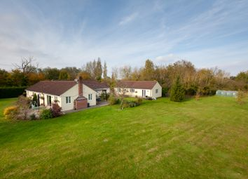 Thumbnail 4 bed detached bungalow for sale in Cardinals Green, Horseheath, Cambridge