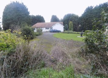 Thumbnail 3 bed detached bungalow for sale in Brough Lane, Elkesley