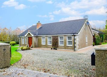 Thumbnail 3 bed detached bungalow for sale in Bishops Court Road, Downpatrick, County Down
