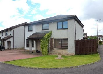 Thumbnail 6 bed detached house for sale in Park Road, Newcarron, Falkirk
