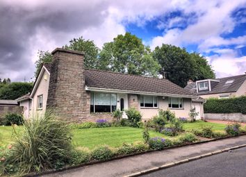 Thumbnail 4 bed detached bungalow for sale in Farnham, Romanhill Road, Hardgate
