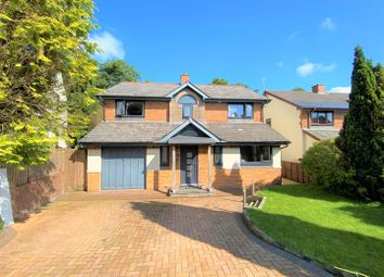 Thumbnail 4 bed property for sale in Nant Arw, Capel Hendre, Ammanford