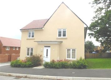 Thumbnail 4 bed property to rent in Raleigh Road, Yeovil