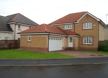 Thumbnail 4 bed detached house to rent in Wedderburn Road, Dunblane