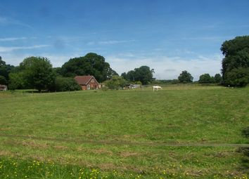 Thumbnail 3 bed equestrian property for sale in Woodland St Mary, Lambourn