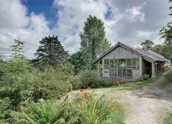 Orchard Flower Farm, Madron Road, Penzance, Cornwall TR20