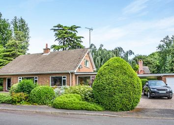 Thumbnail 4 bed bungalow for sale in Beechfield Gardens, Spalding