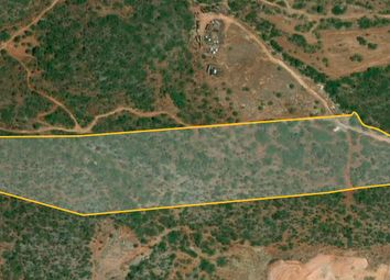 Thumbnail Land for sale in Guelhim, Estoi, Faro, East Algarve, Portugal