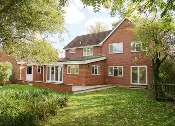 Thumbnail 5 bedroom detached house for sale in South Street, Risby, Bury St. Edmunds