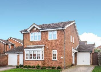 Thumbnail 4 bed detached house to rent in Buckingham Drive, Chislehurst