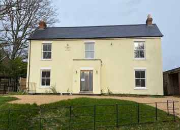 Thumbnail 4 bed detached house to rent in Fern Way, Titchfield, Fareham