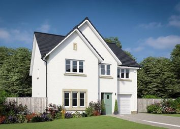 "Thumbnail 4 bedroom detached house for sale in ""The Crichton"" at Willow Park Drive, Penicuik"
