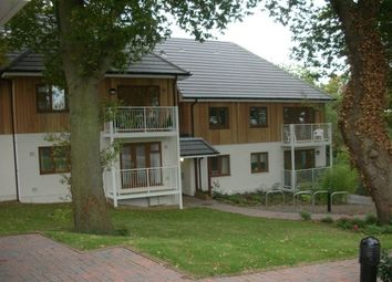 Thumbnail 2 bed flat to rent in Southampton