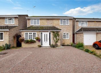 Thumbnail 4 bedroom detached house for sale in Winston Way, Halstead, Essex
