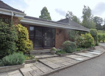 Thumbnail 3 bed bungalow to rent in London Road, Mickleham, Dorking
