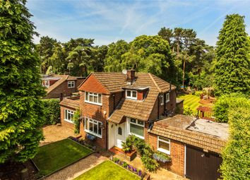Thumbnail 5 bedroom detached house for sale in Pyrford, Surrey
