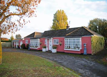 Thumbnail 4 bed detached bungalow for sale in Bridge Road, Broughton, Brigg