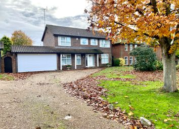 Thumbnail 4 bed detached house to rent in Southern Haye, Hartley Wintney, Hook