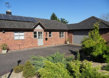 Thumbnail 2 bed semi-detached bungalow to rent in Linton, Ross-On-Wye