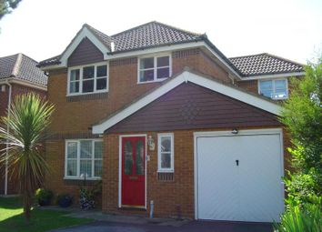 Thumbnail 4 bed detached house to rent in Selwood Way, New Milton
