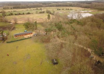 Thumbnail 4 bed equestrian property for sale in Northwold, Thetford, Norfolk