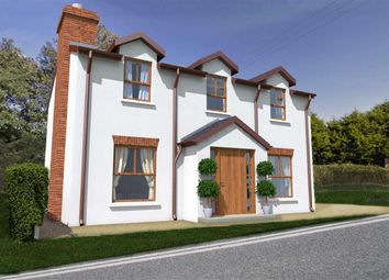 Thumbnail 4 bed detached house for sale in Loughview Close, Ballygowan, Co. Down