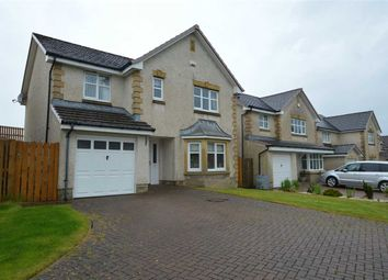 Thumbnail 4 bedroom detached house for sale in Langlook Place, Crookston, Glasgow