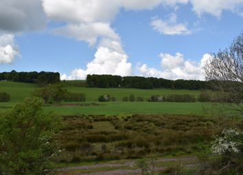 Thumbnail Land for sale in New Abbey Road, Cargenholm, Dumfries