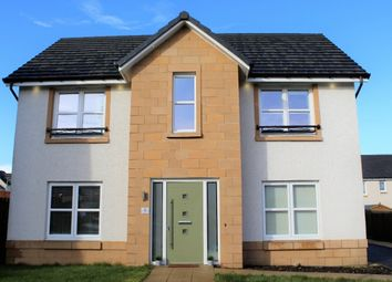 Thumbnail 4 bed detached house for sale in 5 Burnside Drive, Denny
