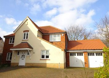 Thumbnail 4 bed detached house for sale in Broadlands Way, Rushmere St. Andrew, Ipswich