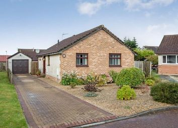 Thumbnail 3 bed bungalow for sale in Douglas Brown Place, Coylton, South Ayrshire, Scotland