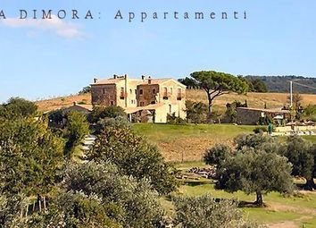 Thumbnail 17 bed villa for sale in Grosseto, Tuscany, Italy