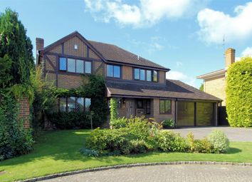 Thumbnail 4 bed detached house to rent in Zinnia Drive, Bisley, Woking
