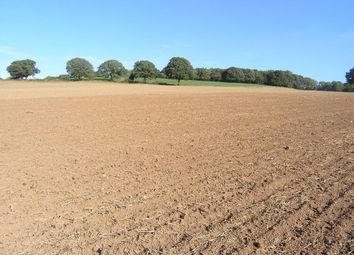 Thumbnail Farm for sale in Bromyard Road, Cradley, Malvern