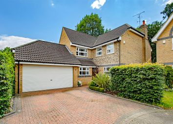 Thumbnail 4 bed detached house for sale in Black Green Wood Close, Park Street, St. Albans