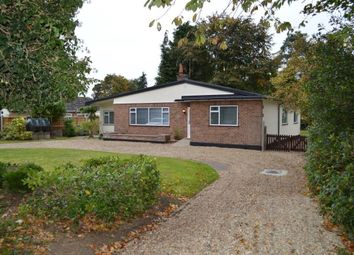 Thumbnail 4 bedroom bungalow to rent in Norwich Road, Lenwade, Norwich