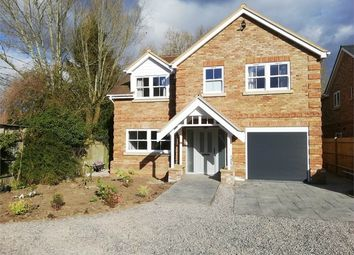 Thumbnail 5 bed detached house to rent in Grovelands Road, Spencers Wood, Reading, Berkshire