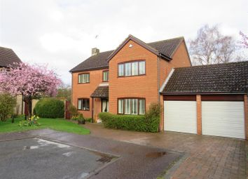 Thumbnail 4 bed detached house to rent in Meadway, Cringleford, Norwich