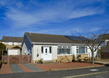 Thumbnail 2 bed semi-detached bungalow for sale in Briar Grove, Ayr