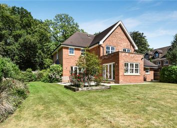 Thumbnail 5 bedroom detached house for sale in Portesbery Road, Camberley, Surrey