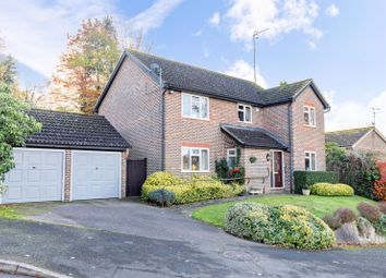 Thumbnail Detached house for sale in Kidbrooke Rise, Forest Row