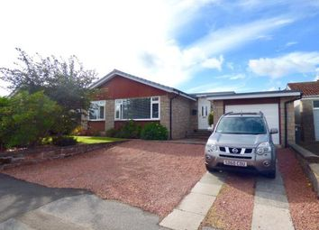Thumbnail 3 bed detached bungalow for sale in Georgetown Road, Dumfries, Dumfries And Galloway