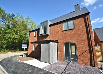 Thumbnail 4 bed detached house to rent in Pegasus Close, Chilton, Didcot