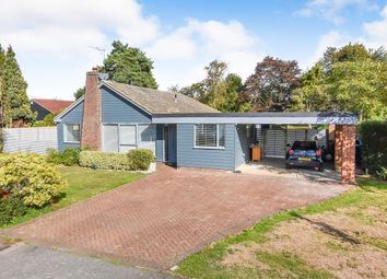 Thumbnail 4 bed bungalow for sale in High Laver Road, Matching Green, Essex