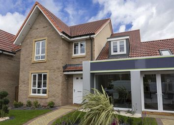 "Thumbnail 4 bed detached house for sale in ""Drummond"" at Whitehill Street, Newcraighall, Musselburgh"