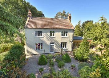Thumbnail 3 bed detached house for sale in Church Lane, East Cottingwith, York
