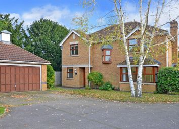 Thumbnail 4 bed detached house to rent in St. Andrews Gardens, Cobham