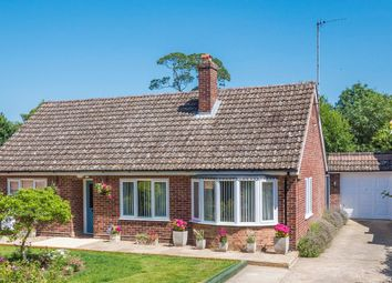 Thumbnail 3 bed detached bungalow for sale in Lavenham, Sudbury, Suffolk