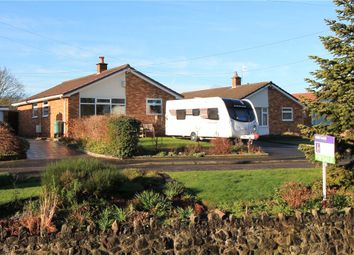 Thumbnail 4 bed detached bungalow for sale in Easton-In-Gordano, North Somerset