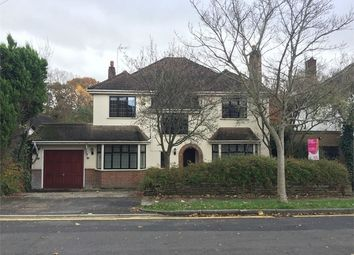 Thumbnail 4 bed detached house to rent in Hogarth Avenue, Brentwood, Essex